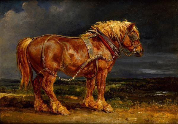 ward_horse