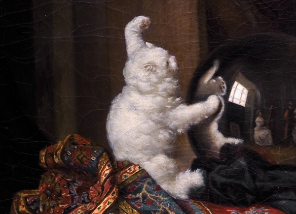 gerard_chat_angora_detail