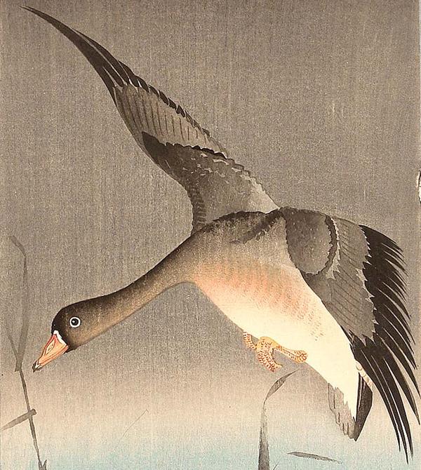 Ohara Koson - Goose (Quelle:  Ukiyo-e.org)