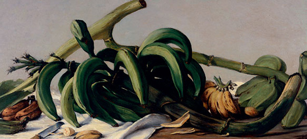 Francisco Oller - Still Life With Plantains and Bananas (Quelle: NY Times)