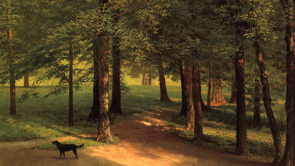 Albert Bierstadt - Irving Woods (with dog) (Quelle: Wikiart)